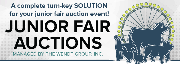 Junior Fair Auction